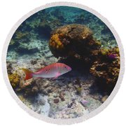 Mutton Snapper Round Beach Towel