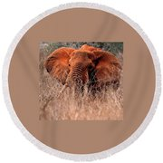 Round Beach Towel featuring the photograph My Elephant In Africa by Phyllis Kaltenbach