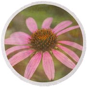 Round Beach Towel featuring the photograph My Garden Walk by Arlene Carmel