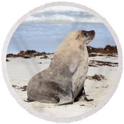 My Good Side Round Beach Towel by Mike Dawson