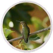 My Green Colored Hummingbird 4 Round Beach Towel