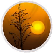 Mystical Sunset Round Beach Towel by Shelby  Young