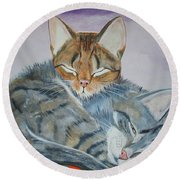 Round Beach Towel featuring the painting Nap Time by Thomas J Herring
