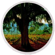 Napa Valley Ingenook Winery Roadside Round Beach Towel