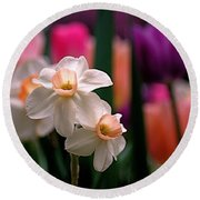 Narcissus And Tulips Round Beach Towel
