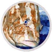 Nassau Grouper Portrait Round Beach Towel