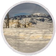 Natural Beauty Round Beach Towel by Sue Smith