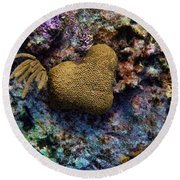 Natural Heart Round Beach Towel