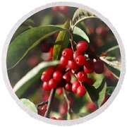 Natures Gift Of Red Berries Round Beach Towel
