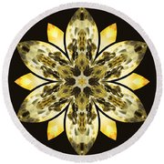 Nature's Mandala 57 Round Beach Towel