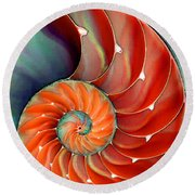 Nautilus Shell - Nature's Perfection Round Beach Towel by Sharon Cummings