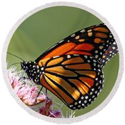 Round Beach Towel featuring the photograph Nectaring Monarch Butterfly by Debbie Oppermann