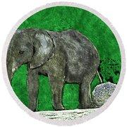 Nelly The Elephant Round Beach Towel