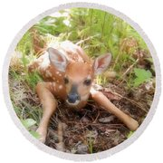 New Fawn In The Forest Round Beach Towel by Angie Rea