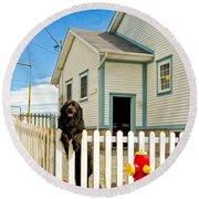 Newfoundland Dog In Newfoundland Round Beach Towel