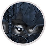 Round Beach Towel featuring the photograph Night Grazing by Janie Johnson
