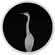 Night Of The Blue Heron 3 Round Beach Towel