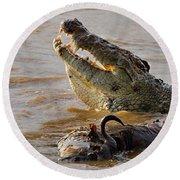 Nile Crocodile With A Dead Wildebeest Round Beach Towel