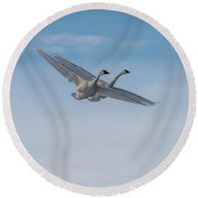 Trumpeter Swans Tandem Flight Round Beach Towel
