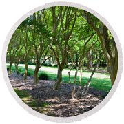 Round Beach Towel featuring the painting Norfolk Botanical Garden 3 by Lanjee Chee
