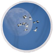 Round Beach Towel featuring the photograph North Bound by Jack Bell