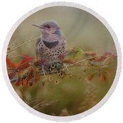 Northern Flicker In Fall Colors Round Beach Towel