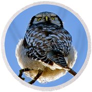 Northern Hawk Owl Looks Around Round Beach Towel
