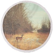November Deer Round Beach Towel