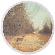 November Deer Round Beach Towel by Carrie Ann Grippo-Pike