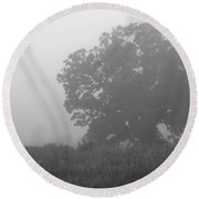 Oak In The Fog Round Beach Towel