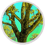 Round Beach Towel featuring the photograph Oaks 3 by Pamela Cooper