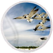 Ocean Birds Round Beach Towel by Iconic Images Art Gallery David Pucciarelli