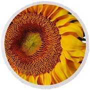 Round Beach Towel featuring the photograph Oh Happy Day by Bruce Bley