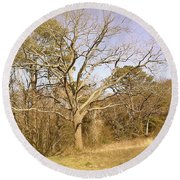 Round Beach Towel featuring the photograph Old Haunted Tree by Amazing Photographs AKA Christian Wilson