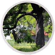 Old Texas Oak Tree Round Beach Towel by Connie Fox