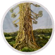Old Tree In Spring Light Round Beach Towel by Felicia Tica
