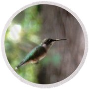 Hummingbird On A Mission Round Beach Towel by Belinda Lee