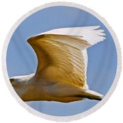 On Angel's Wings Round Beach Towel by Gary Holmes