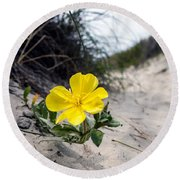 Round Beach Towel featuring the photograph On The Path by Sennie Pierson