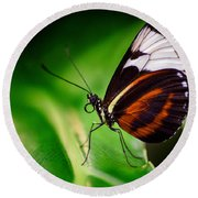 Round Beach Towel featuring the photograph On The Wings Of Beauty by Garvin Hunter