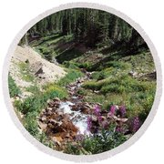 On Top Of The Continental Divide In The Rocky Mountains Round Beach Towel