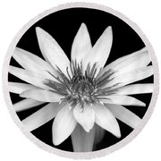 One Black And White Water Lily Round Beach Towel