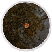 Round Beach Towel featuring the photograph One Leaf by Jeremy Rhoades