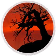 One Tree Hill Silhouette Round Beach Towel by Greg Norrell