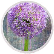 Round Beach Towel featuring the photograph Onion by Larry Bishop