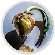 Onion Skin And Shadow Round Beach Towel by Bob Orsillo