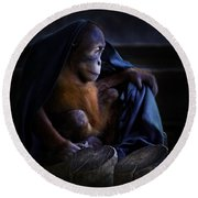 Orang Utan Youngster With Blanket Round Beach Towel