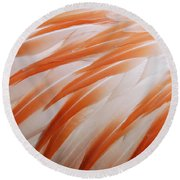Orange And White Feathers Of A Flamingo Round Beach Towel