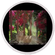 Round Beach Towel featuring the photograph Orange Cat In The Shade by Absinthe Art By Michelle LeAnn Scott