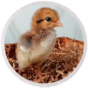 Orange Chick Round Beach Towel